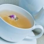 Dimagrire con il tè bianco